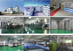 Guangdong Liwang New Energy Co., Ltd.