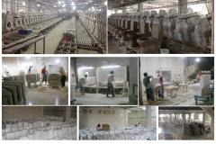 Chaozhou Ocean Ceramic Co., Ltd.