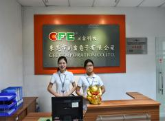 Dongguan Cfe Electronic Co., Ltd.
