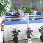 Guangzhou YJ Imp. & Exp. Co., Ltd.