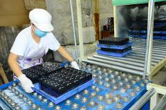 Shenzhen Eagle Battery Co., Ltd.