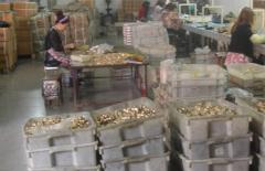 Taizhou Tengyu Brass Co., Ltd.