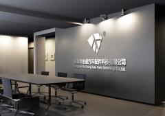 Dongguan Xiesheng Auto Parts Technology Co., Ltd.