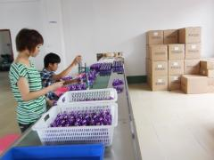 Guangzhou Phero Perfume Co., Ltd.