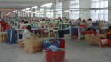 Taile Bags & Cases Co., Ltd.