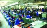 Tung Wing Electronics (Shenzhen) Co., Ltd.