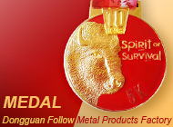 Dongguan Follow Metal Products Factory