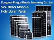 Dongguan Pengrui Electric Technology Co., Ltd.