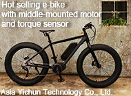 Asia Yichun Technology Co., Ltd.