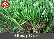 Henan Allmay Import & Export Co., Ltd.