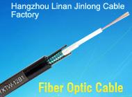 Hangzhou Linan Jinlong Cable Factory