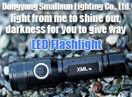 Dongyang Smallsun Lighting Co., Ltd.
