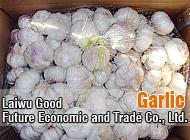 Laiwu Good Future Economic and Trade Co., Ltd.