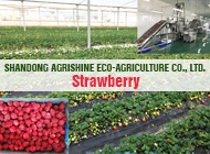 SHANDONG AGRISHINE ECO-AGRICULTURE CO., LTD.