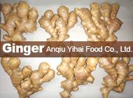 Anqiu Yihai Food Co., Ltd.