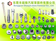 Dongguan Chao Jun Auto Fastener Co., Ltd.