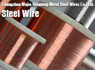 Changzhou Wujin Hengtong Metal Steel Wires Co., Ltd.