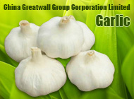 China Greatwall Group Corporation Limited