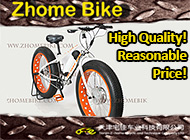 Tianjin Z-Home Bicycle and Technique Com., Ltd.