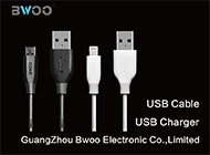 Guangzhou Bwoo Electronic Co., Limited