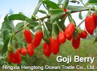 Ningxia Hengtong Ocean Trade Co., Ltd.