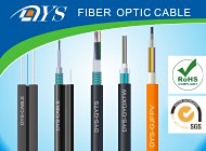 Shenzhen DYS Fiber Optic Technology Co., Ltd.