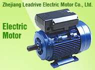 Zhejiang Leadrive Electric Motor Co., Ltd.