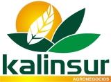 Kalinsur S. A