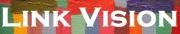 Link Vision International
