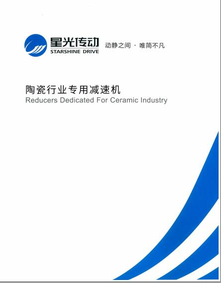 Reducers Dedicated For Ceramic Industry