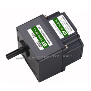 80mm 40W High Voltage DC Gear Motor