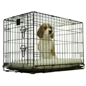 Black Folding Dog Crate Cage