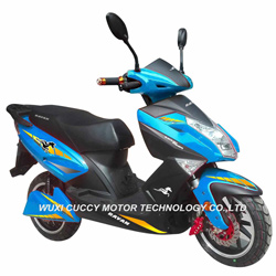 1000W 1500W 2000W Aguila Ava Adult Fat Tire Electric Scooter for Sale (CCE-E8)