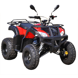 Moto 200cc Utility Quad Bike ATV for Farm (MDL 200AUG)
