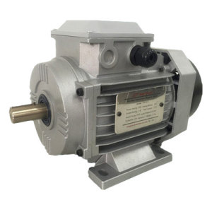 750W AC Flexible Synchronous Motor with UL/Ce Certificates (YFM-80)