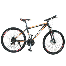 26 Pama 21 Speed Mountain Bicycle