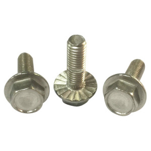 Screw/Bolt/Self-Tapping Screw/Assemblies Screws with High Quality