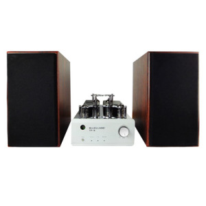 Vacuum Tube Power Amplifier with Bluetooth (TP-9)