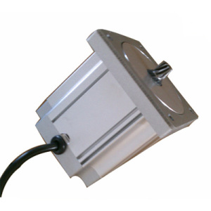 80bl3a90-4838 Micro BLDC Electric Brushless Motor BLDC Motor