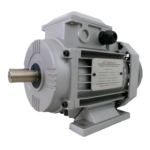 0.75kw Electric Motor with Flexible Mechanical Power Transmission (YFM-80)
