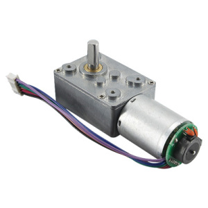 Electric DC worm gear motor with encoder for Automotive tansmission