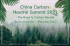 China Carbon Neutral Summit 2021