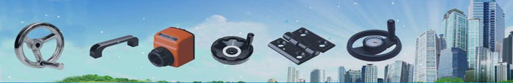 Hengshui Bonsheng Mechanical and Electrical Products Trade Co., Ltd.