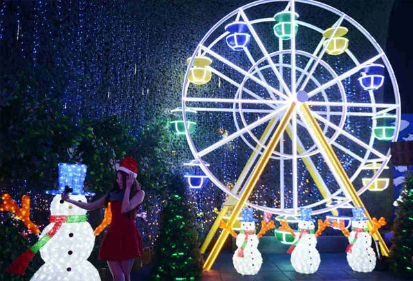 Hong Kong Ocean Park Launched Christmas LED Light Sea
