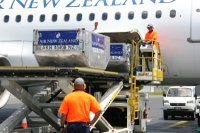 Virgin Australia and Air New Zealand Limited Will Continue Their Trans-Tasman Alliance