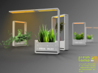 This Safe Haven for Plants Assists in Watering,Fertilization&Lighting Your Petite Plant