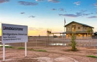 The Bridgestone Research Farm Started Growing Guayule for Research Use