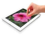 Apple Disappointed Analysts with Its iPad Sales Figures When It Announced Its Q4 Results