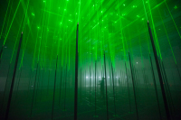 Once in The Glowing Forest You Will Be Instantly Be Immersed with New,Exciting Sight&Sound