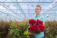 Rose Growers Reap Better Results Using LED Lights